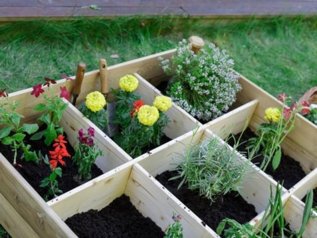 Les carré potager MAJALIS sont proposées sous forme carrée (120×120 cm). Il est destiné à recevoir plantes et légumes