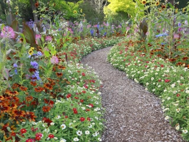 Allée de jardin fleurie à base de copeaux de bois