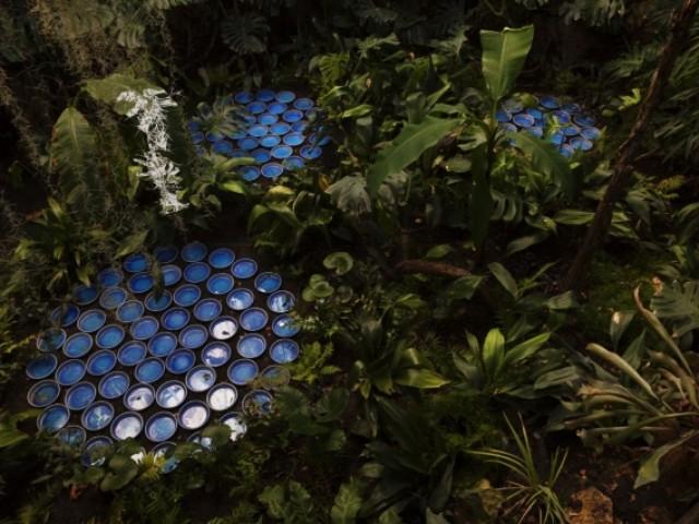Des coupelles de céramique évocatrices - Rainforest, Patrick Nadeau à Chaumont-sur-Loire