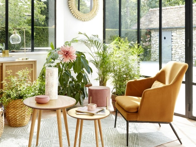 Des plantes à foison dans le salon