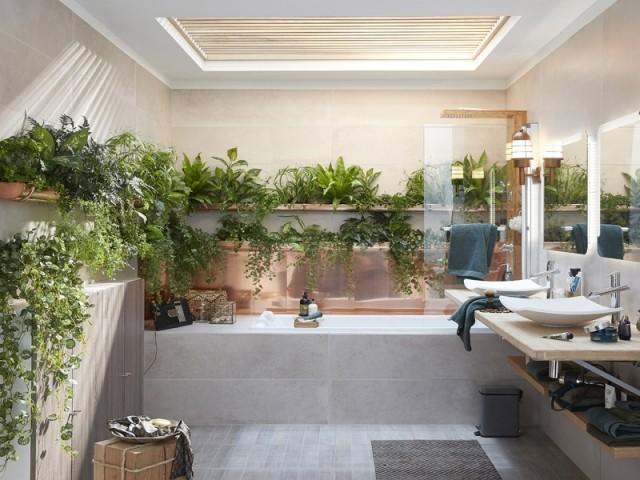 Des plantes dans la salle de bains