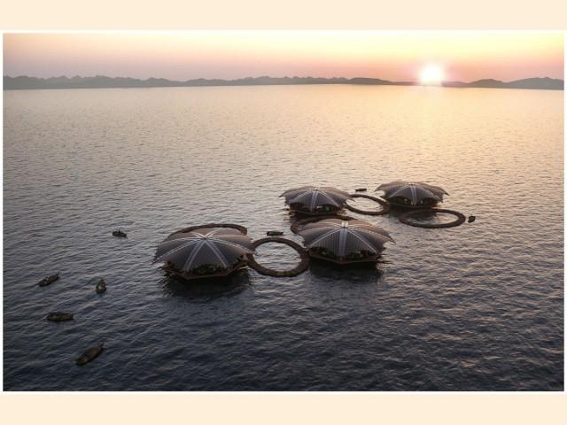 Le Lotus Flottant, Martin Pretorius, Raphael Trischler, Afrique du Sud