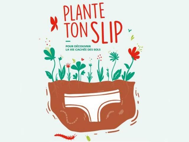 """Découvrez l'état de vos sols avec l'opération """"Plante ton slip"""" !"""
