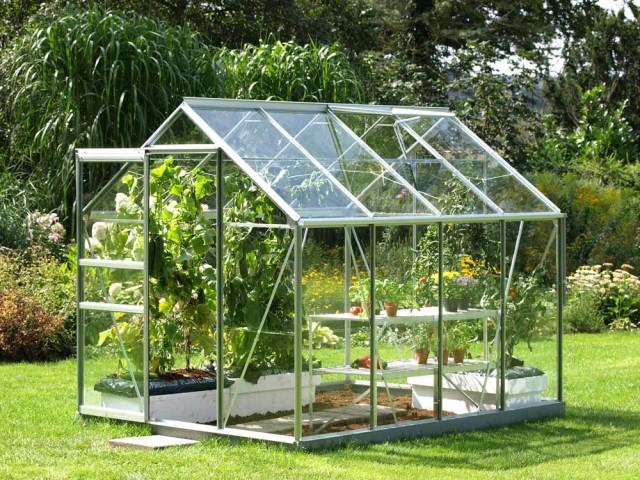 Serre en verre trempé Allium, 699 €, Gamm Vert