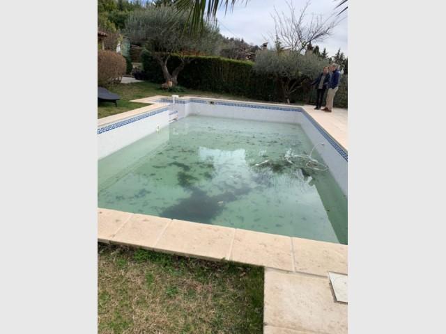 Avant : un vieux bassin avec une frise bleue