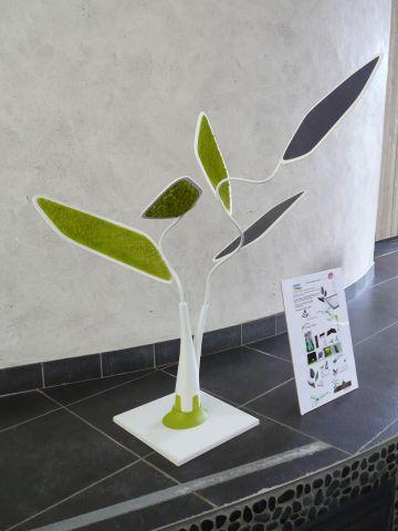 Piscine, accessoires, arbre solaire