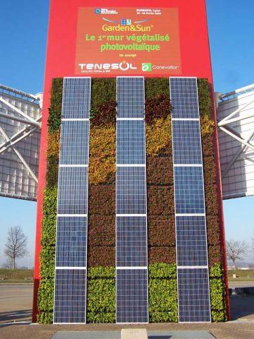 mur vegetalise photovoltaique