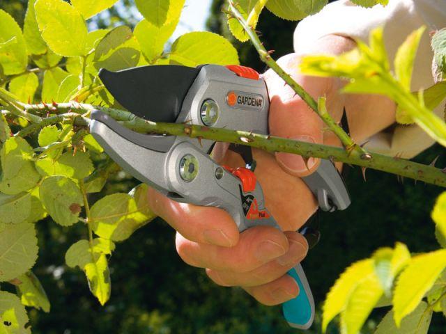 les outils indispensables pour jardiner au printemps. Black Bedroom Furniture Sets. Home Design Ideas