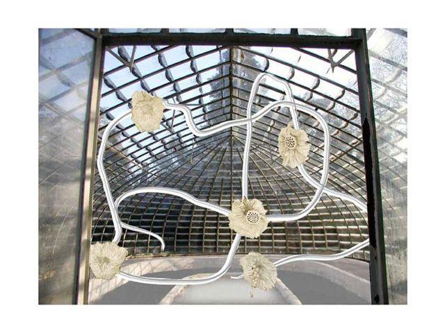Paca Sanchez : Projet in situ pour le Festival APART, Serre du château de Roussan, Saint-Rémy-de-Provence, 2011.