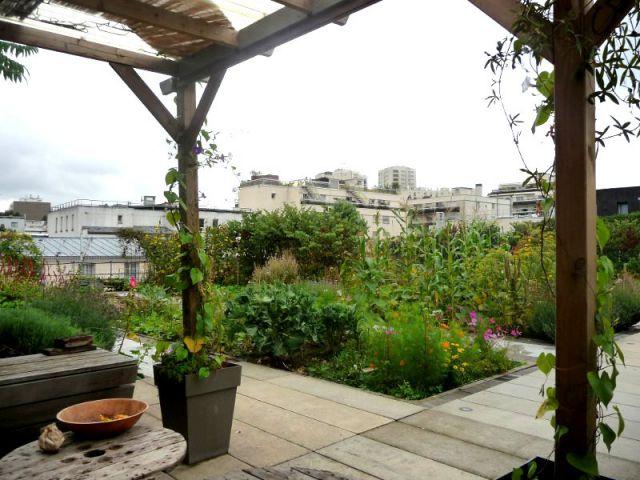 1 jardin solidaire sur 1 toit parisien for Amenagement toit terrasse appartement