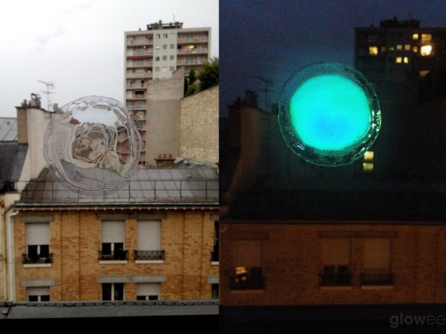 Bioluminescence jour/nuit