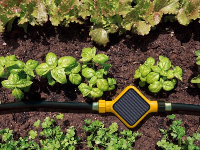 1 jardin facile entretenir gr ce aux objets connect s for Jardin facile a entretenir