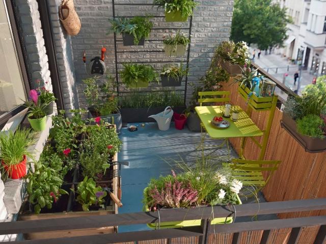 Un potager sur son balcon bucolique