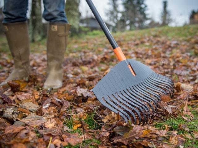 Un balai à feuilles pour entretenir son jardin