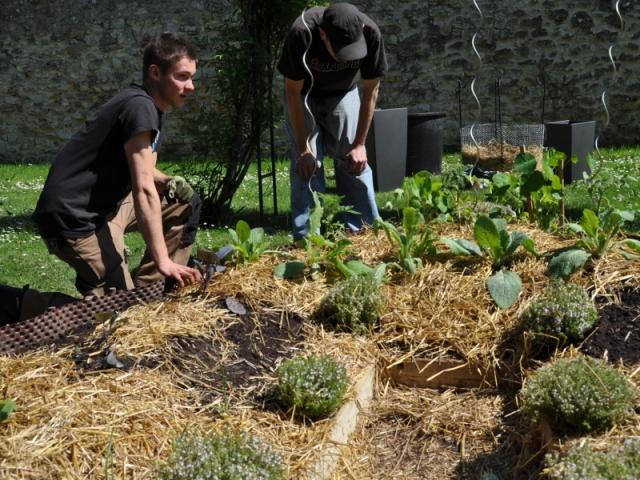 <b>Pas besoin d'avoir un jardin pour jardiner !</b