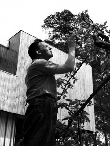 Alvar Aalto dans son jardin