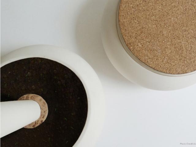 L'eco-pebble se referme par un bouchon en liège, ou se transforme en vase