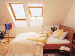 Fenêtres sur toit
